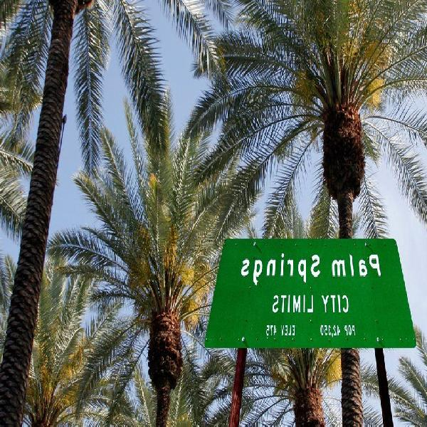 Sex dating in North palm springs